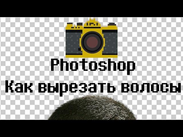 📷Photoshop урок. Как вырезать фон, волосы и шерсть в фотошопе. cc 2015