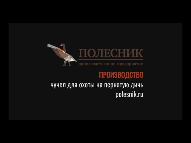 Чучела производственного предприятия Полесник Тестирование весна 2017