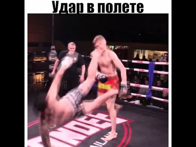 " MMA UFC BOXING BJJ 🔞 on Instagram: ""Оцените удар! спорт ко ko бокс vinesmma самбо fighting knockout mma ufc видео treshtok vine моти..."