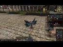 Karos Online: Крафт Легендарного ЩИТА 105lvl