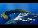 10 Most Dangerous Islands You DON'T Want To Visit