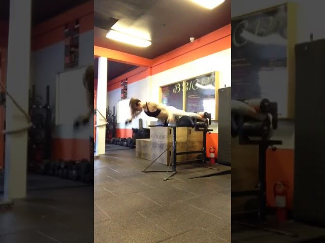 GHD Isometric Back Extension Hold with Reverse Fly