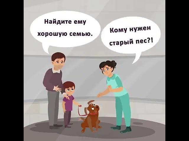 История одного пса.... Грустная история со счастливым концом