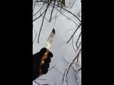 Охотник от ООО Кизляр