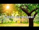 Ярославна Гордаш - live