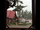 Extreme Close Call Lightning Strike In Canada