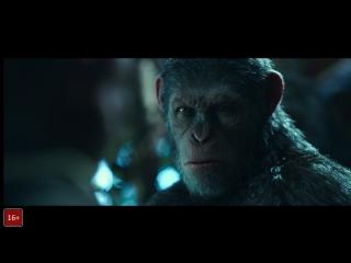 Смотри «Планета обезьян: Война» в RealD 3D – получи двойные бонусы на карту Киностатус