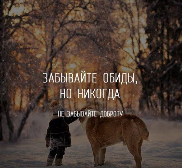 Фото №456255924 со страницы Мамета Чабанова
