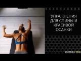 Отличные упражнения для спины и правильной осанки