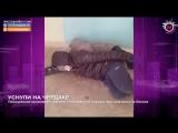 Мегаполис - Уснули на чердаке - Нижневартовск