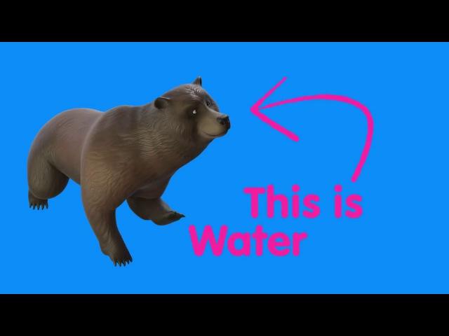 Waffle Water Bear Trailer (Waffle) - Gear VR