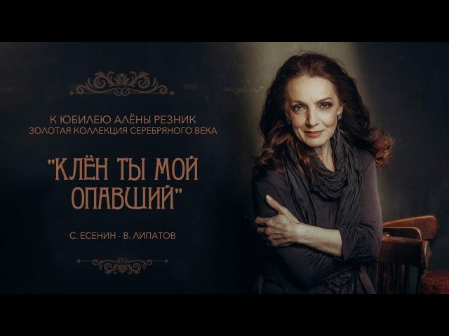 Алена Резник.