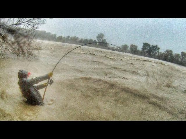 CRAZY MAN FIGHT BIG CATFISH IN A SWOLLEN RIVER UNDER THE STORM HD by CATFISH WORLD