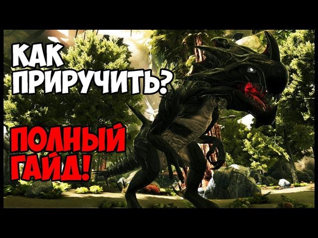 КАК ПРИРУЧИТЬ РИПЕРА/ЖНЕЦА? (ЧУЖОГО) — ПОЛНЫЙ ГАЙД!/REAPER TAMING ► Ark: Survival Evolved 9