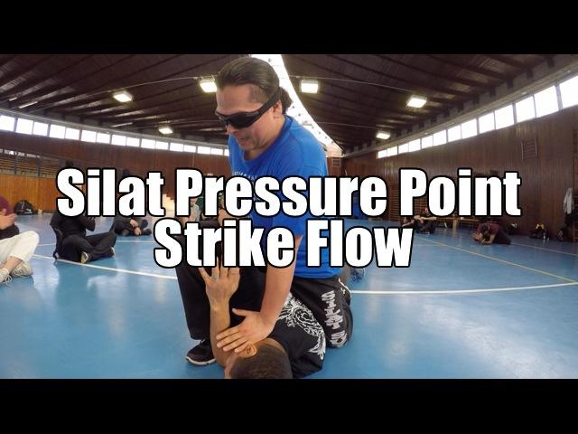 Silat Suffian Bela Diri - Striking Pressure Points of the body