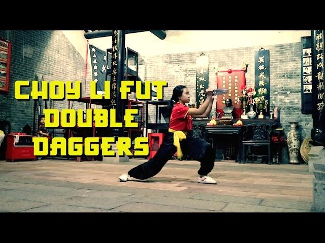 Hung Sing Choy Li Fut Kung Fu - Double Daggers Form