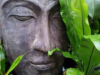RELAXING ZEN MUSIC For Stress Relief ─ Deep Sleep ─ Body & Mind Healing ☯ 2H