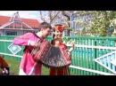 Band ODESSA Гармонист/Accordionist