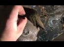 Переделка неудачно сделанной антикоррозийной обработки колесных арок в автоса