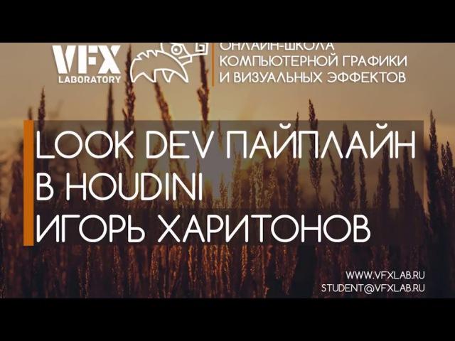 VFXLab || Основы Look Dev в Houdini