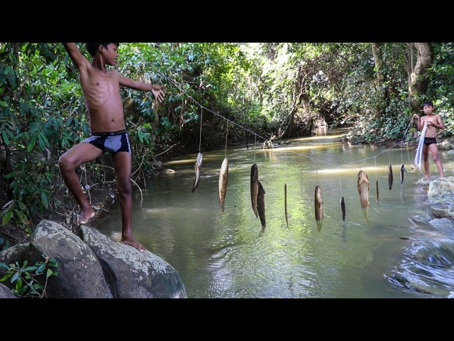 Fishing Technique Trap - Smart Boy Trapping Fish With Line Multiple Knots | Cambo Trap Country Fish