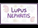 Lupus nephritis - causes, symptoms, diagnosis, treatment, pathology