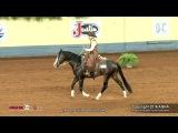 A Judges Perspective 2016 AQHA Senior Ranch Riding