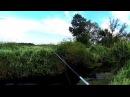 Рыбалка в ручье. И так тоже бывает!Рыбалка на спиннинг.