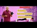 Планка бесполезное и вредное упражнение Доктор Бубновский развенчивает миф о планке 0