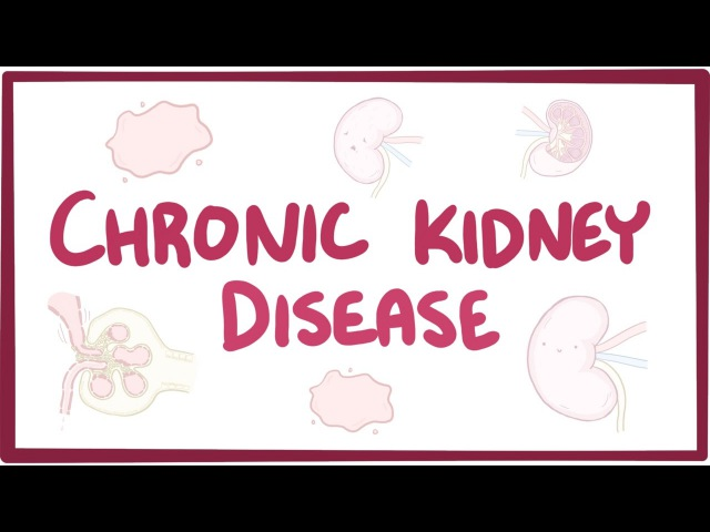 Chronic kidney disease (chronic renal failure) - causes, symptoms, diagnosis, treatment, pathology