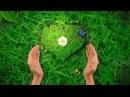 Вспышка любви и ощущения единства с Творцом в момент краха - залог победы и очище...