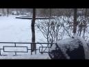 Снег ❄️, дочь 👧,прогулка 🚶♀️