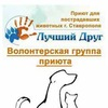 """Волонтёрская группа приюта """"Лучший друг"""""""