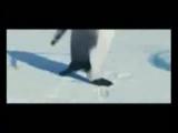 Май Сентябрь — Видео Mail.Ru-4
