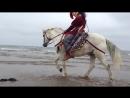 Scythians around the Black Sea..