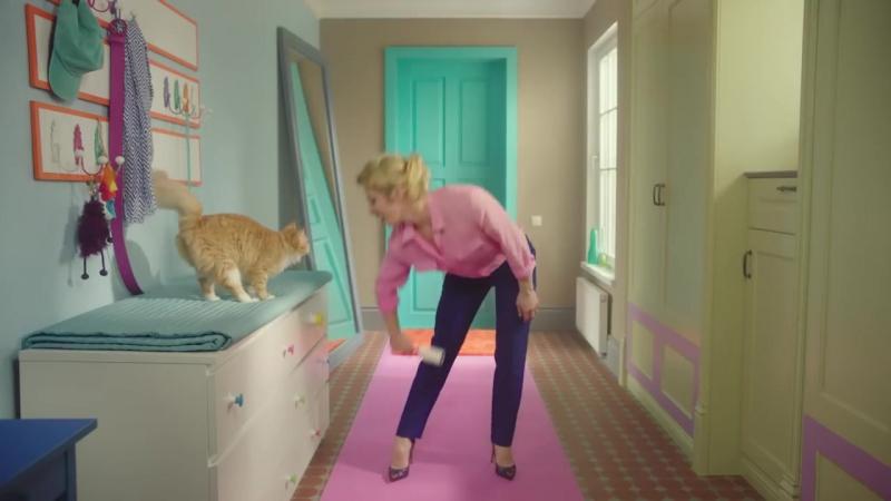 Perfect Fitness. Это упражнения, которые знакомы каждому хозяину кота, ведь жизнь с котом – это уже фитнес.