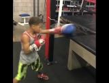 Маленький боксер  // STRONG DIVISION