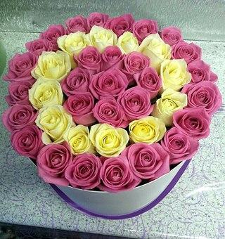 Живые цветы опт рузаевка доставка цветов наши гарантии