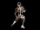 Айзек Азимов Строение и функции человеческого тела Часть 1 Наука философия Ирина Ерисанова