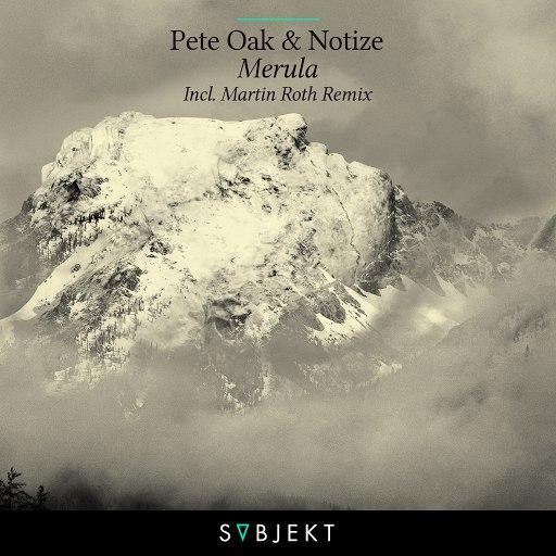 Pete Oak альбом Merula