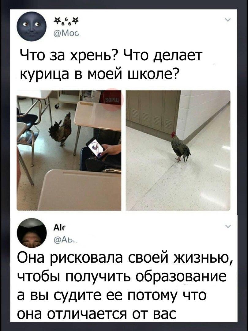 https://pp.userapi.com/c841228/v841228723/52901/Yei2H3VfrPo.jpg