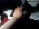 мой флэш играет с моей рукой