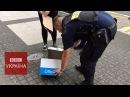 Як польська поліція рятувала кажана