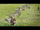 Platoon Attack On Mock Enemy Position – U.S. Marines Conduct Training In S. Korea