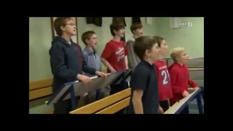 Auftakt zum Neujahrskonzert 2012 (ORF2) Wiener Sängerknaben