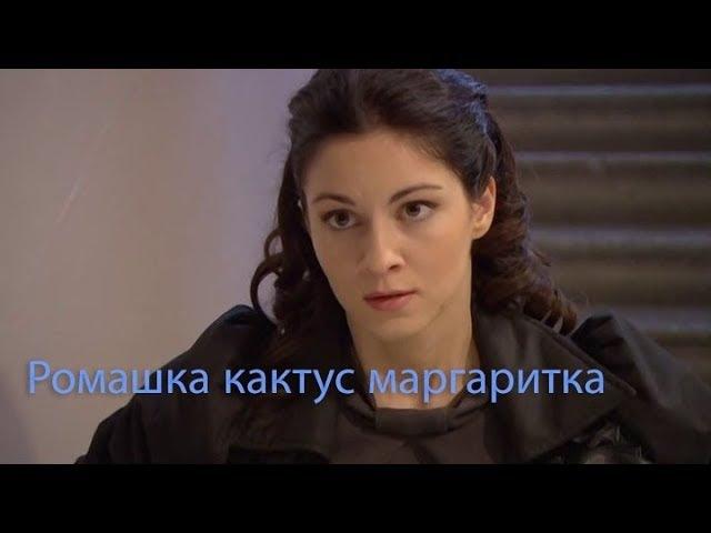 Poмантика. Ромашка, кактус, маргаритка. 2009.