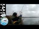 Поехал ловить сома А поймал колючего монстра! Волшебная рыбалка на спиннинг.