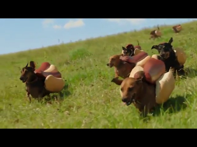 HEINZ Hot Dog Commercial the 'Wiener Stampede'