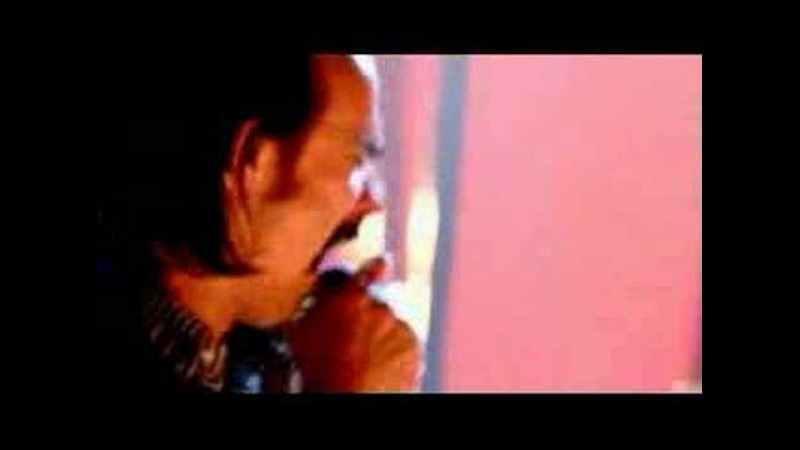 Grinderman - Honey Bee (Let's Fly to Mars) (Live on Later)