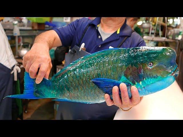 日本路邊小吃 - 巨大的拿破崙魚 生魚片